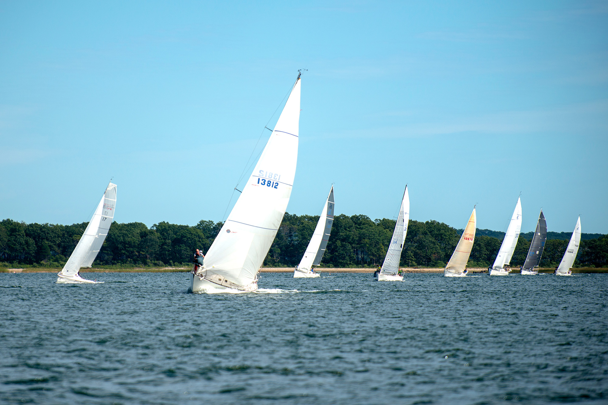 sailing-regatta